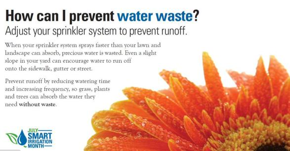 How can you prevent water waste? Adjust your sprinklers to avoid runoff! #SmartIrrigation #WaterWisely @NTMWD