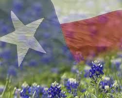 texasbluebonnets