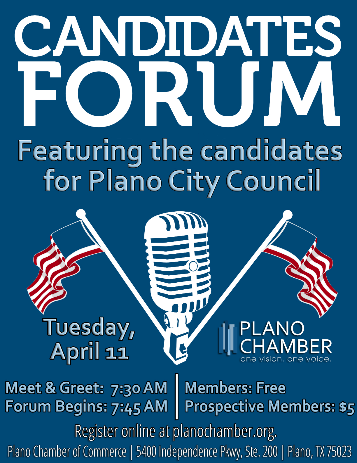 Get ready to vote: Meet Ann Bacchus – Plano City Council Place 2